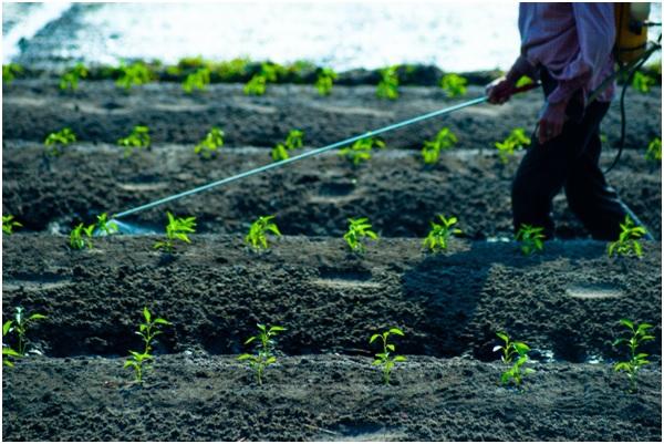 ENFER21 30 original - 10 enfermedades provocadas por el glifosato. 17 países han prohibido o restringido el uso de este herbicida carcinógeno.