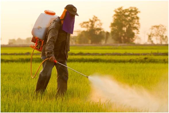 ENFER25 27 original - 10 enfermedades provocadas por el glifosato. 17 países han prohibido o restringido el uso de este herbicida carcinógeno.