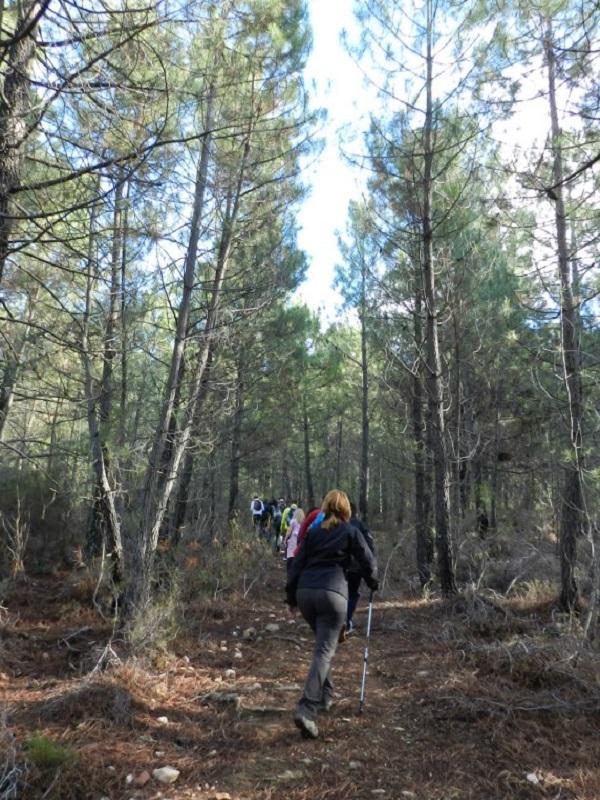 Burguillos del Cerro organiza rutas senderistas