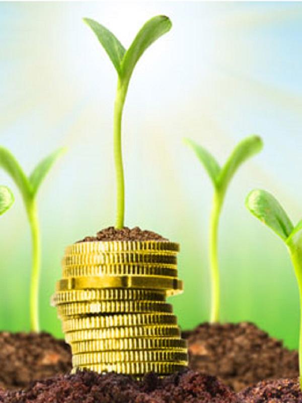 Tecnología Verde para el consumo responsable