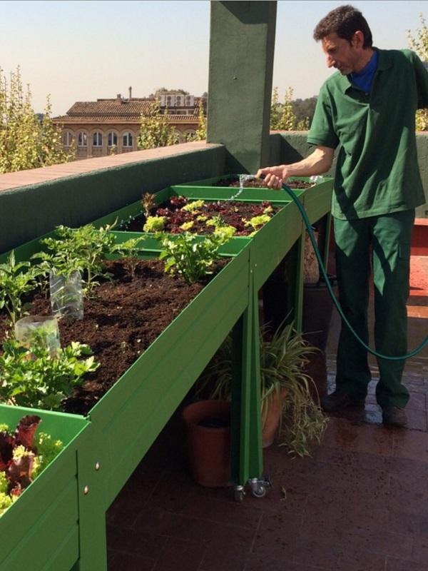 Diputación y Subbética Ecológica se unen para promocionar huertos urbanos y productos locales