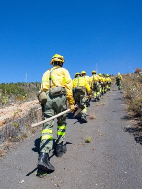 El incendio de Granadilla (Tenerife) afecta ya a 220 hectáreas de pinar y matorral