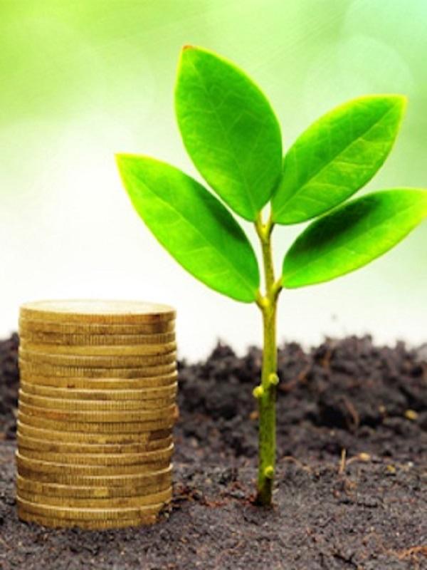 BNY Mellon anima a 28 bancos a la emisión de bonos verdes