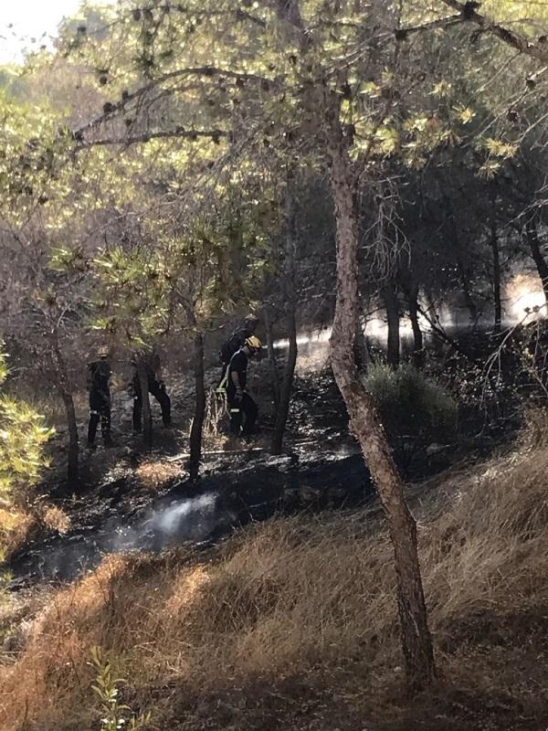Comunitat Valenciana elabora un 'mapa de inflamabilidad' con las zonas de mayor riesgo de incendios