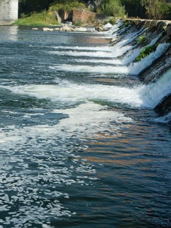 Este domingo vuelve el exterminio a los ríos asturianos que están en serio peligro