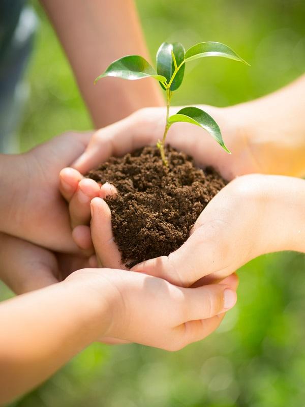 Adeslas Salud consigue la certificación en gestión medioambiental con la norma ISO 14001:2015