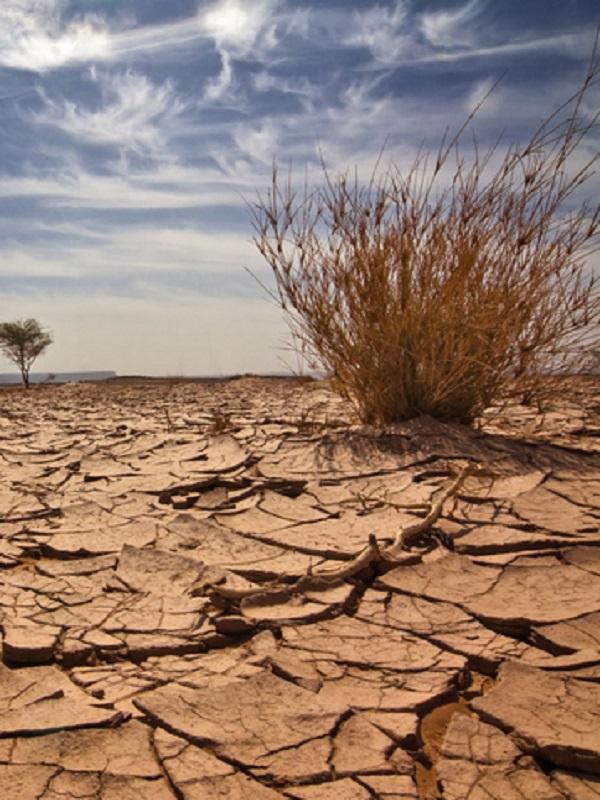 El vicedirector del IFCA participará en el sexto informe sobre cambio climático