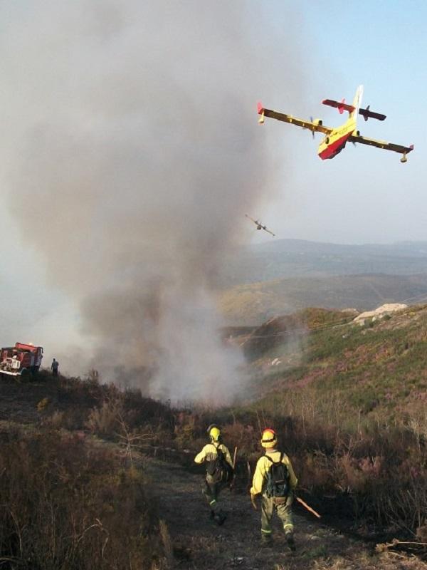Tenerife planifica los medios aéreos necesarios en la lucha contra incendios forestales