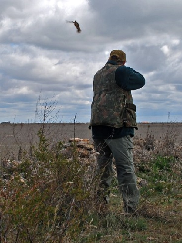 Animalistas exigen a los cazadores respeto por la vida silvestre
