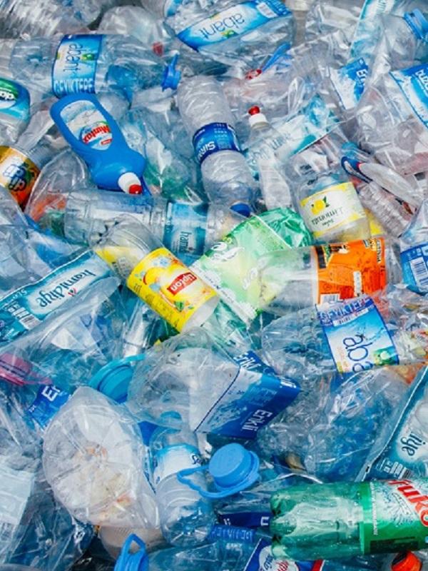 Devorando las botellas de plástico