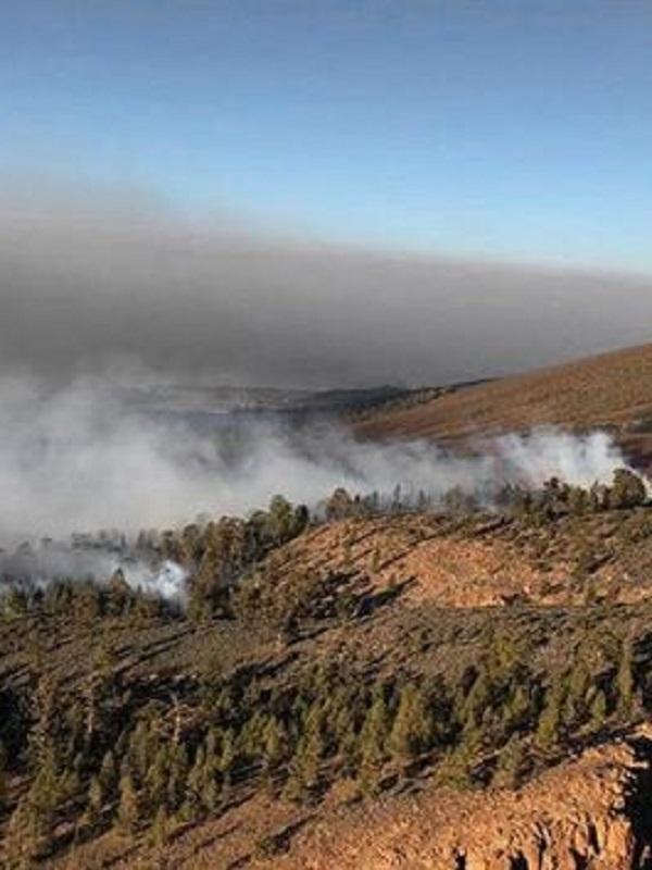 Los Cabildos de Canarias piden más medios aéreos contra incendios fuera de la campaña de verano