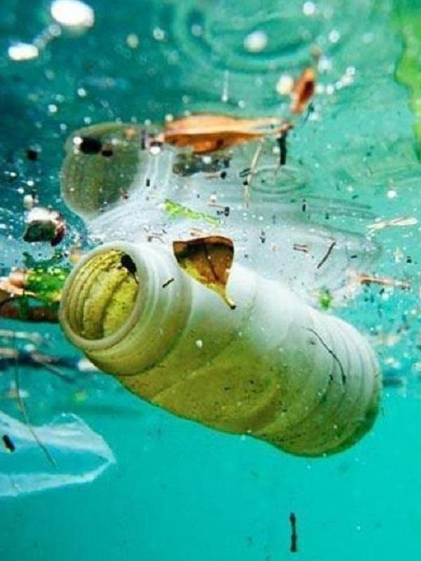 Descubriendo el carbono orgánico liberado por los plásticos en el mar