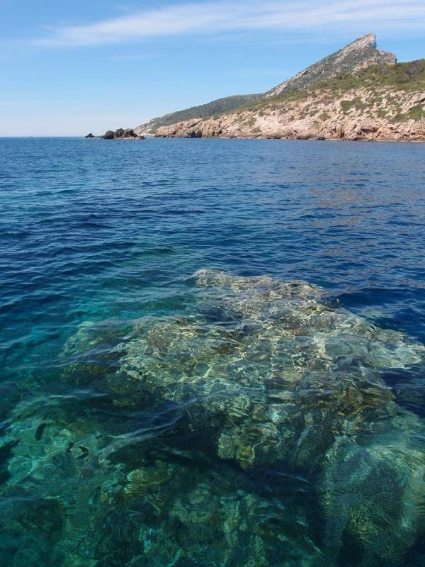Abiertos a consulta pública el proyecto del plan de gestión Natura 2000 y el plan rector de Sa Dragonera