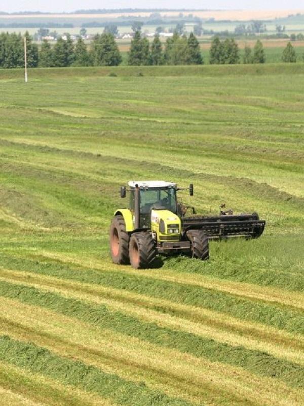 Europa aprueba los nuevos objetivos nacionales de reducción de emisiones agrícolas y del transporte