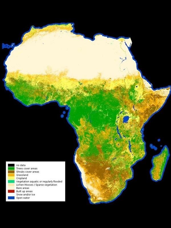 Emisiones de CO2 antropogénico, evidentes en nuevos mapas de satélite