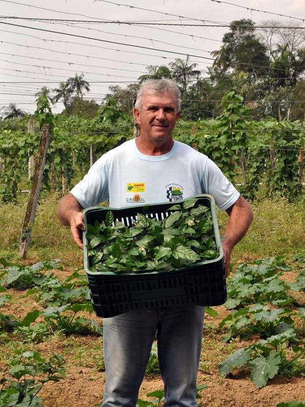 La agricultura ecológica 'se sale' en Galicia
