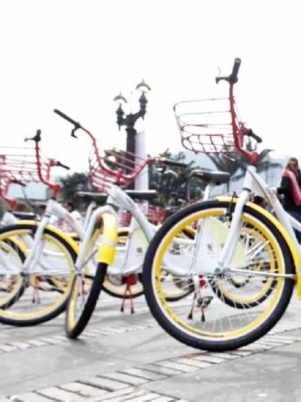 La bicicletas compartidas evitan la muerte de docenas de personas
