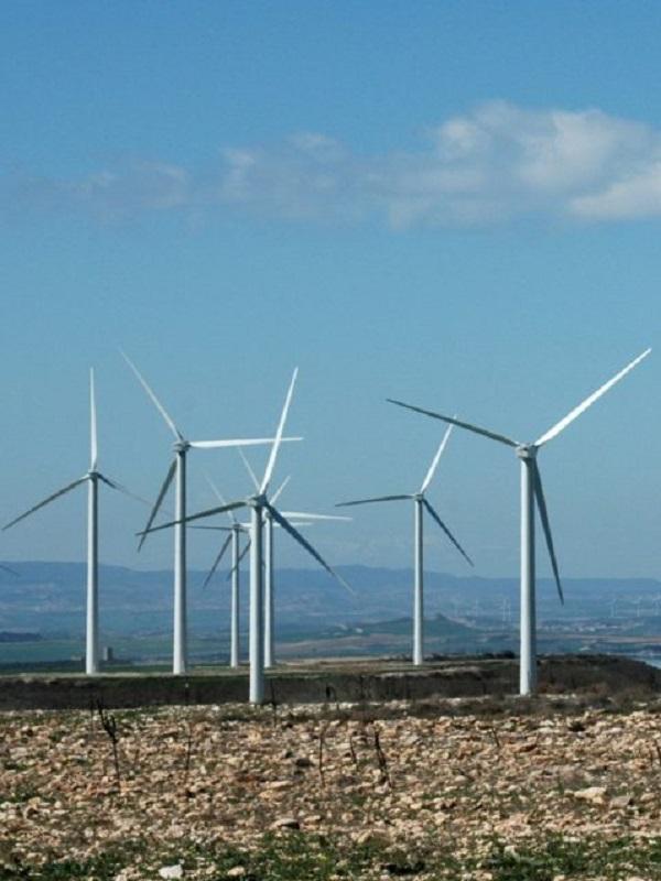 Aragón declara como inversión de interés autonómico 12 parques eólicos y ocho fotovoltaicos