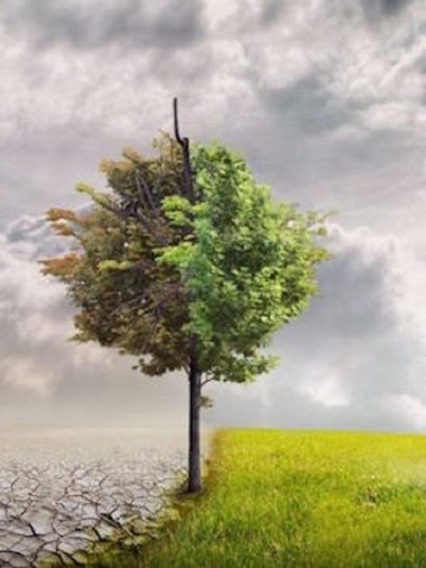 ¿A qué esperamos a tener una Ley contra el Cambio Climático?