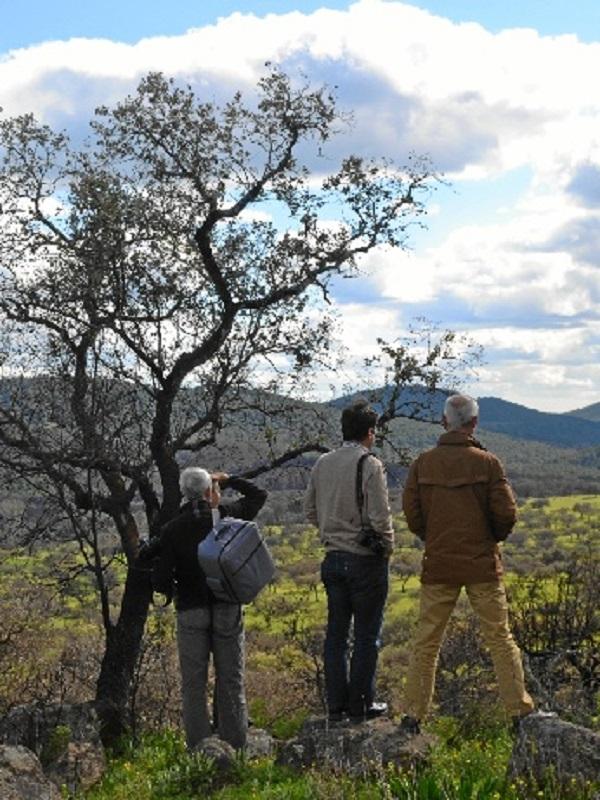Un experto en pastos visita la zona del incendio de La Granada de Riotinto para un informe