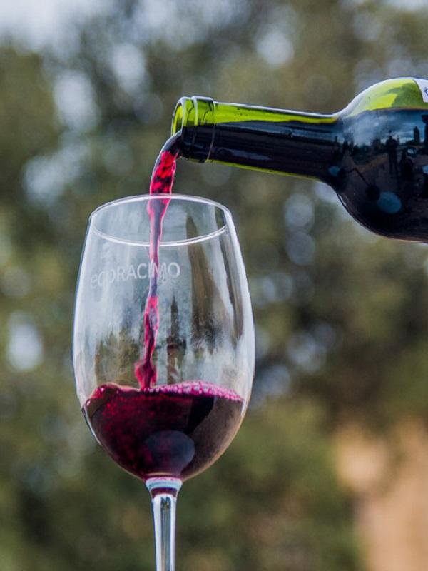 Ecoracimo 2018, los mejores vinos ecológicos
