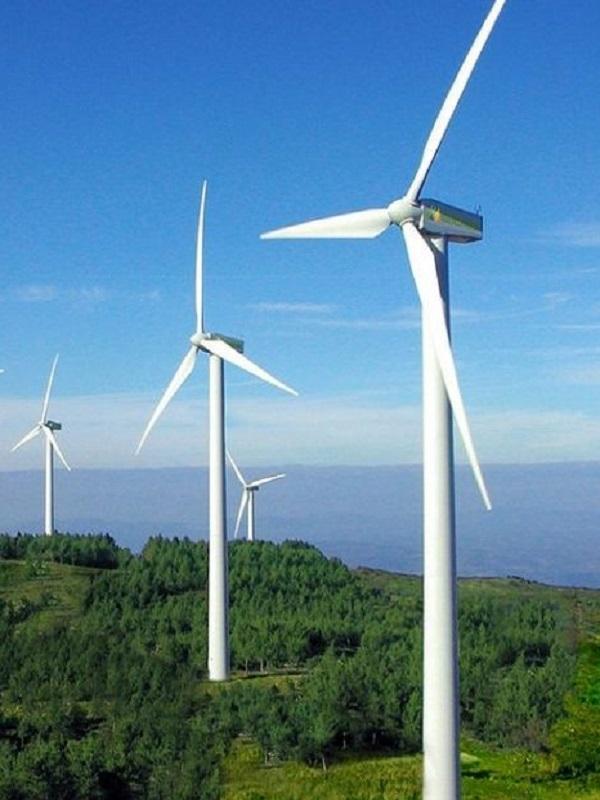 CENER. El proyecto CL-Windcon presenta el desarrollo de sus modelos de parque eólico