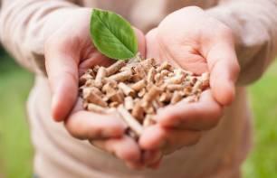 Las calefacciones de biomasa se disparan