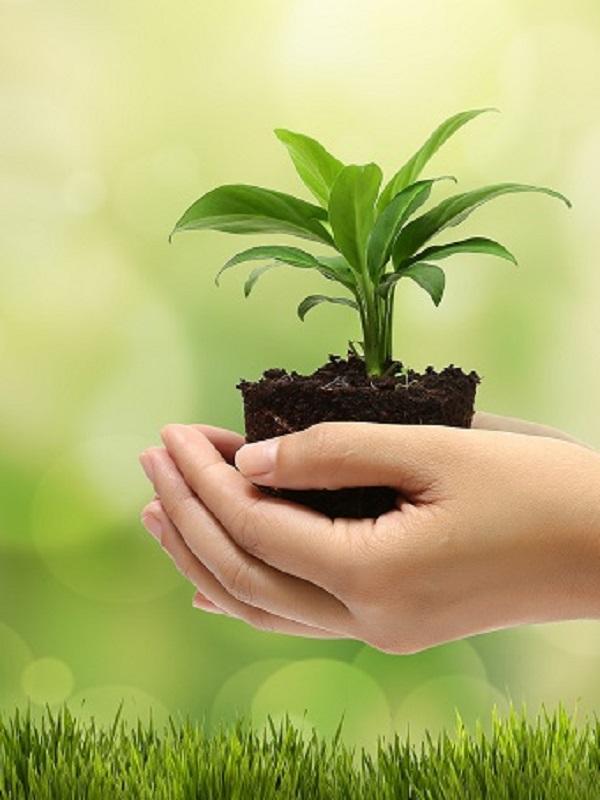 Las personas mayores tienen un papel capital en la conservación del medio natural y la biodiversidad