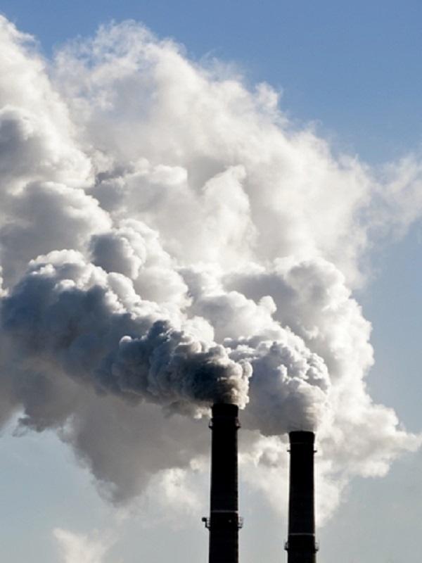 Proyectos Clima, liquidando CO2