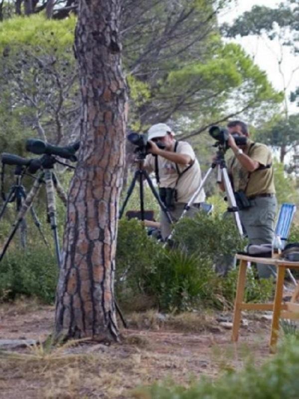 Mijas acondiciona el Mirador de las Águilas para el ecoturismo