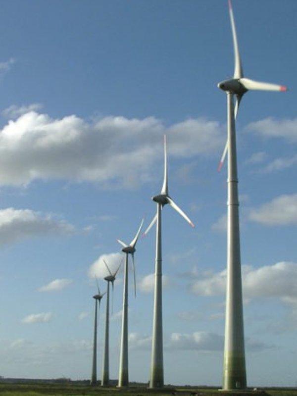 Moody's una bocanada de aire fresco para la energías renovables