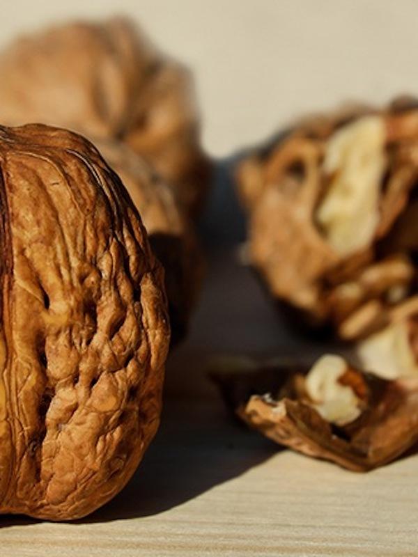 Comer nueces es ganar salud