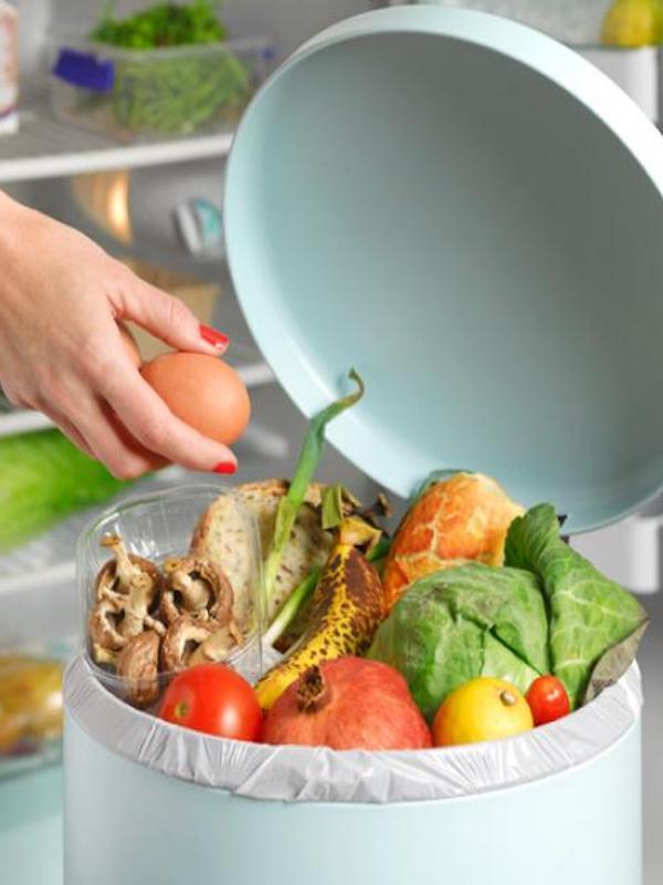 La Diputación de Álava pretende reducir a la mitad el desperdicio de productos alimentarios