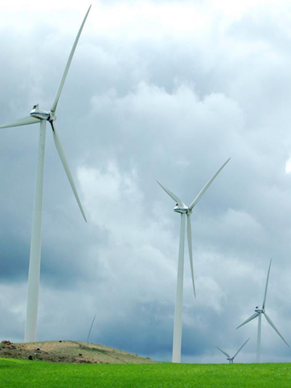 El Gobierno de Aragón autoriza la construcción de 53 proyectos eólicos para cumplir con los plazos del Ministerio