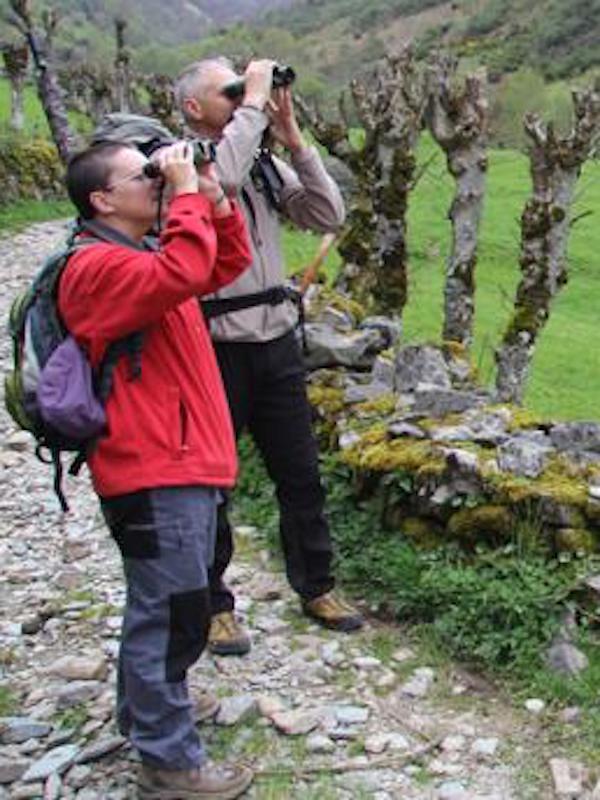 El Principado apuesta por el ecoturismo para revalidar su eslogan de 'Paraíso Natural' y su liderazgo en la España Verde