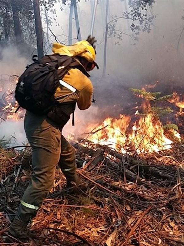 El fuego arrasa 11.428,73 hectáreas en lo que va de 2018 que se mantiene como mejor año del decenio