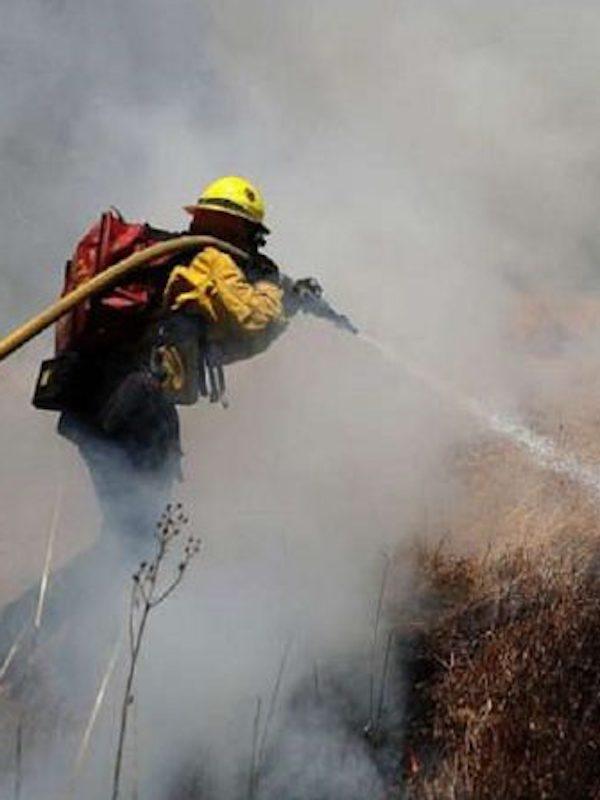 Bomberos Madrid realiza 470 intervenciones en incendios forestales en la primera mitad de 2018