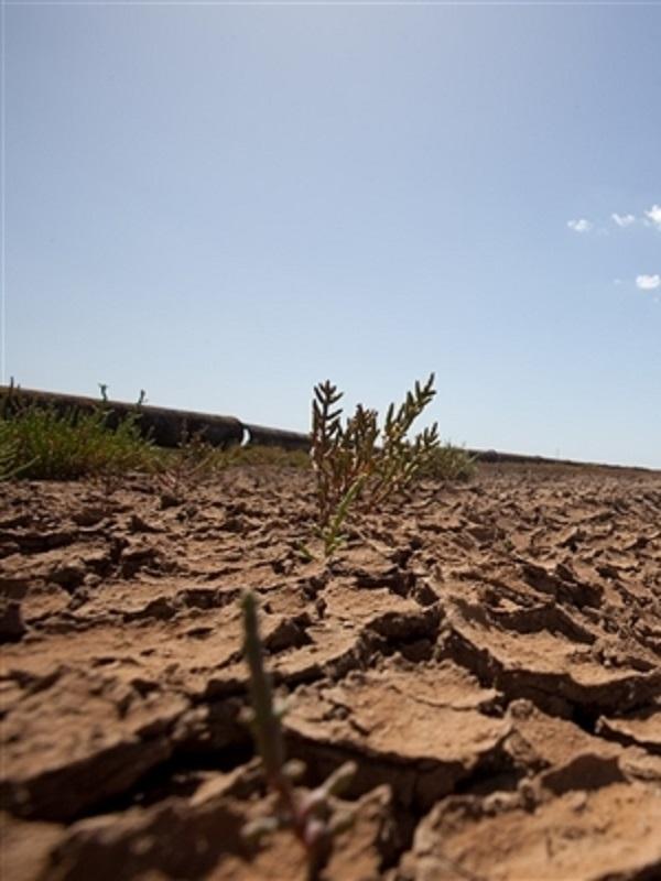 La ONU y el Cambio Climático con acento español