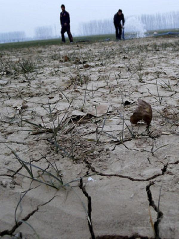 Medio grado menos de calentamiento global puede evitar lluvias extremas