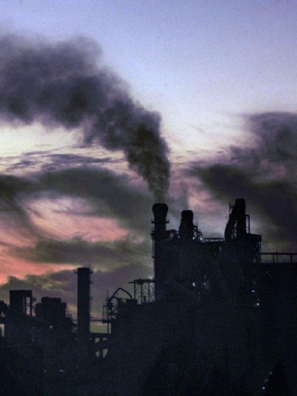 Alegría por el compromiso de la Comisión Europea de un escenario de cero emisiones en Europa