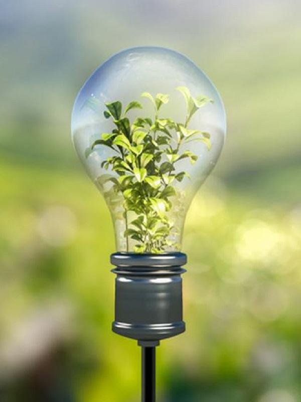 Galicia quiere una transición energética moderada