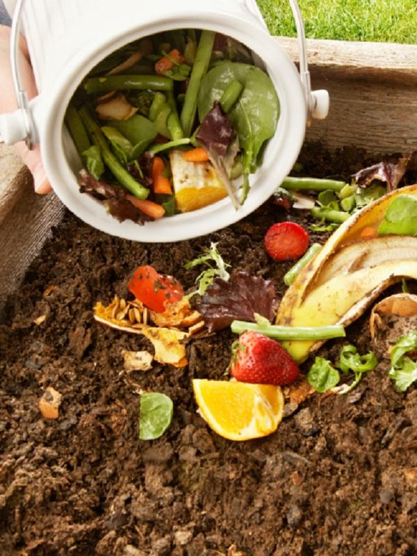 El 90% del abono obtenido en el programa pontés #CompostDaCasa, a sido calificado de