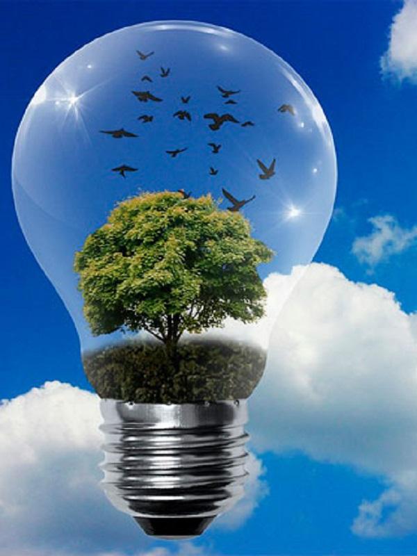 Escandinava de Electricidad energía verde 100%