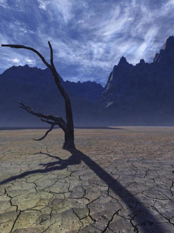 El calor extremo aumenta en verano y en invierno en EEUU y Canadá