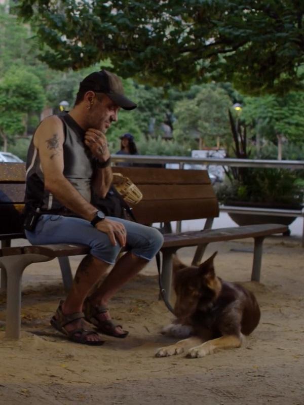 Campaña #MejoresAmigos: 10 historias reales de compañerismo entre hombre y mascota