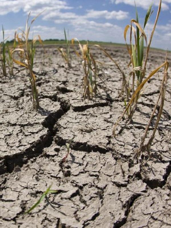 El secretario general de la ONU reclama unión y liderazgo para combatir el profundo problema con el cambio climático