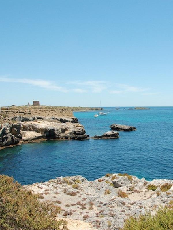 Compromís propone un sistema de boyas ecológicas para preservar el fondo marino en la isla de Tabarca