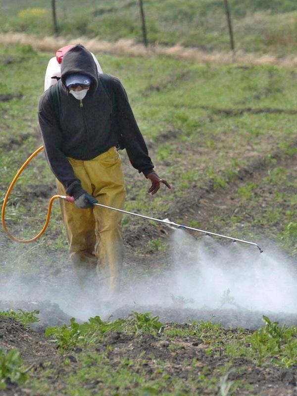 Solo el 17% de los suelos agrícolas europeos no están contaminados con plaguicidas