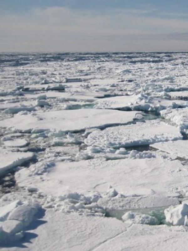 Signos de que el hielo marino ártico se espesa más rápido en invierno