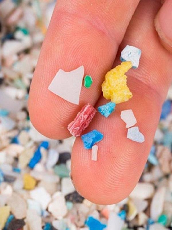 Los microplásticos también se acumulan en la fosa marina más profunda